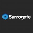 Surrogate Games