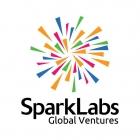 SparkLabs Energy Accelerator 2019