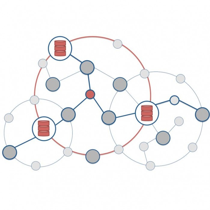 Cognitive Application Network Solutions