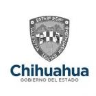 Chihuahua Innova 2018-2