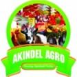 Akindel Agro Team