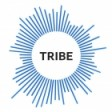 tribeapp's profile picture