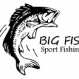 The BigFish
