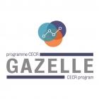 GAZELLE Fund