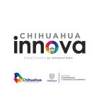 Chihuahua Innova 2019-1