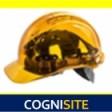 Cognisite's profile picture