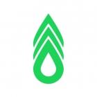 Tree Service Santa Rosa