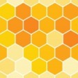 Honeycomb Solutions's profile picture