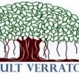 Consult Verraton's profile picture