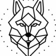 Kamino.us's profile picture