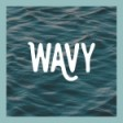 Wavy Travel Inc.