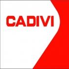 Day Cadivi