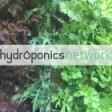 Hydroponics.Network