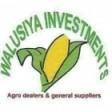 WALUSIYA INVESTMENT
