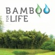 BAMBOO FOR LIFE's profile picture