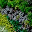 Flowertising