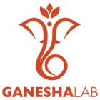 GaneshaLab Call 2020 - Open + Healthcare