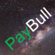 PayBull -  income-based pricing software's profile picture