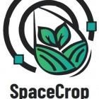 SpaceCrop