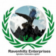 Ravenhillz Enterprises's profile picture