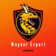 WaynerEsports