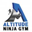 Altitude Ninja