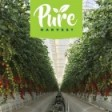 Pure Harvest Smart Farms