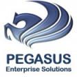 Pegasus Enterprise Solutions