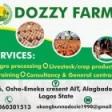 Dozzy Agricultural Enterprise